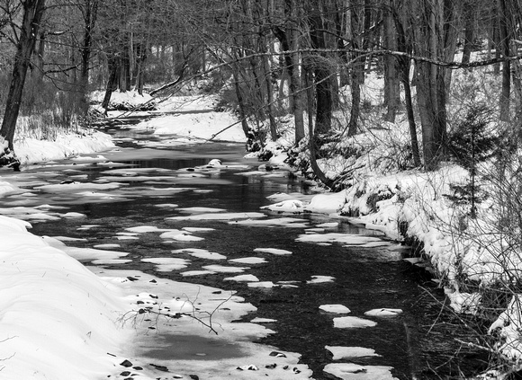 Winter's Brook (1 of 1)